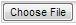 choose-file-button